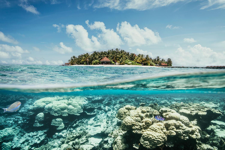tui ag<br />geschäftsbericht<br />malediven